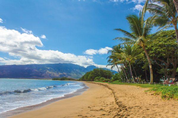 ハワイのビーチ沿い