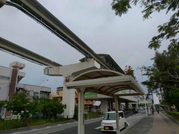 バス停の屋根に根を生やす花