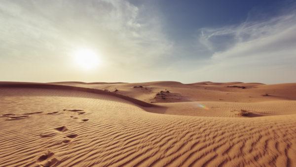 所得の砂漠化